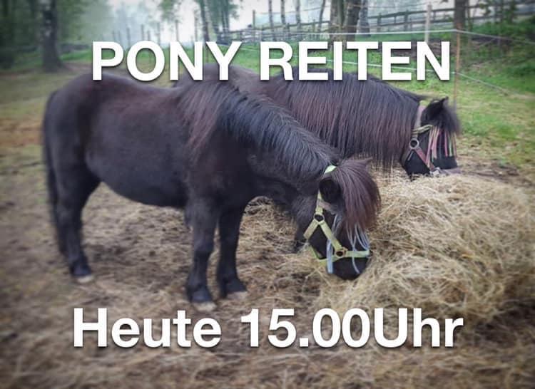 Ponyreiten in Grünstädtel